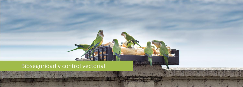 Bioseguridad y control vectorial